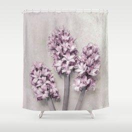 Beautiful Pink Hyacinths Shower Curtain