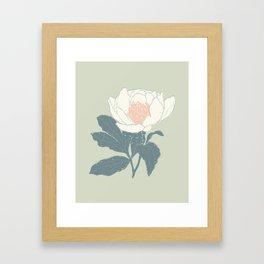 Vintage Garden Peony  Framed Art Print
