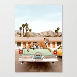 Tiger Motel Canvas Print