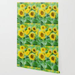Sunflowers field Wallpaper