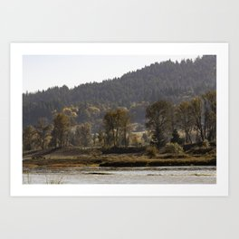 Willamette River Clearlake Path Art Print