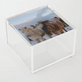 Friends in Iceland Acrylic Box