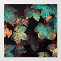 Copper And Teal Leaves Canvas Print