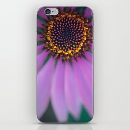 Purple Coneflower Up Close iPhone Skin