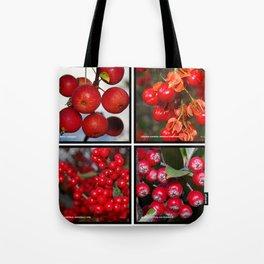 Autumn fruit Tote Bag