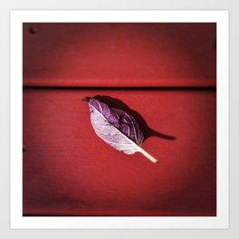 Leaf no. 3 Art Print