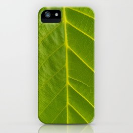 Chestnut green leaf iPhone Case