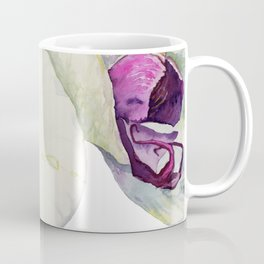 Cream & Fuchsia Phalaenopsis Orchids Coffee Mug