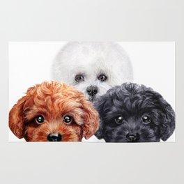 Friends mix. toy poodle & Bichon Rug