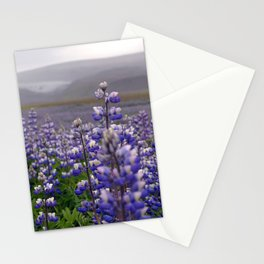 Lupins. Stationery Cards