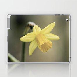 Daffodil IV Laptop & iPad Skin
