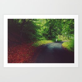 Forest Road Art Print