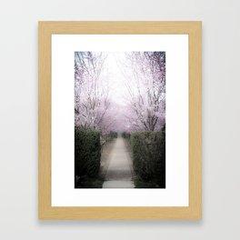 Allee Framed Art Print