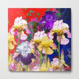 Yellow & Purple Spring Red Iris Garden Metal Print