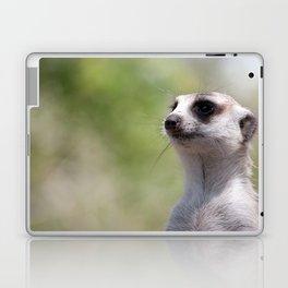 Meerkat Laptop & iPad Skin