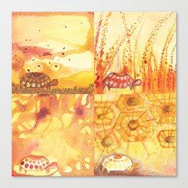 4 Tortoise Canvas Print