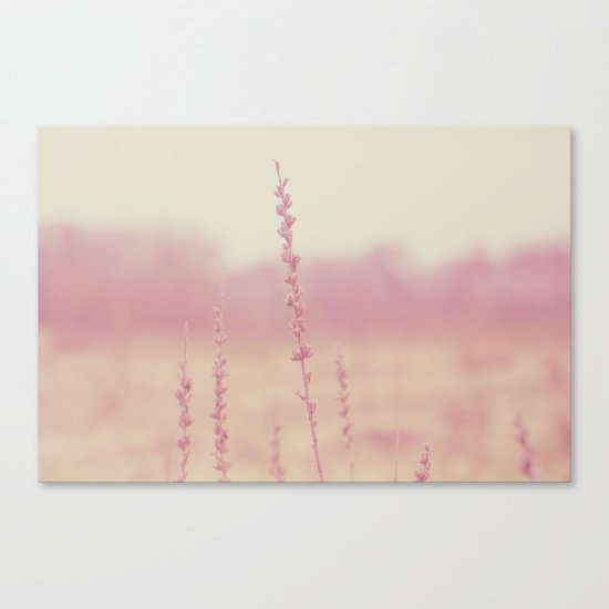 Dreamy Light  Canvas Print