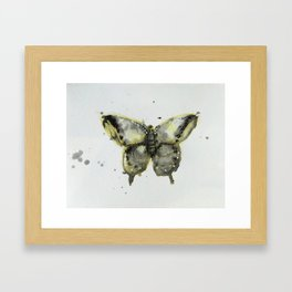 Yellow and Gray Butterfly Framed Art Print