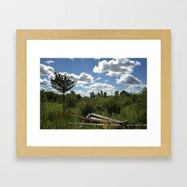 Upstate Trail Nonsense Framed Art Print