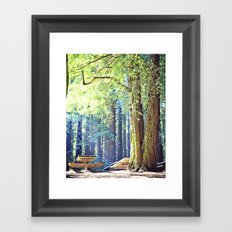 Picnic in the Woods Framed Art Print