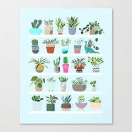 Succulent and Cactus shelfie Canvas Print