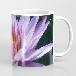 Nymphaea 'Rhonda Kay' II Coffee Mug