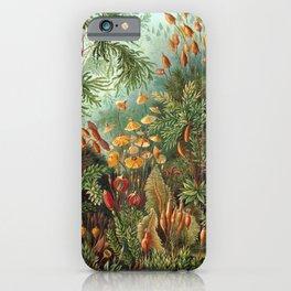 Ernst Haeckel Muscinae Microscopic Landscape iPhone Case