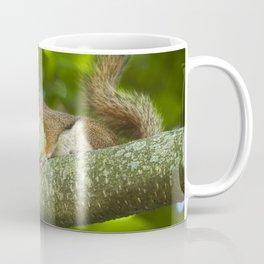 Red Squirrel on a Branch Coffee Mug