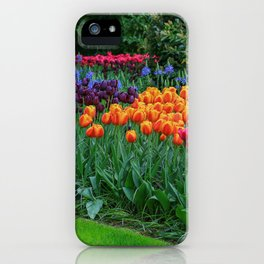 Colorful Tulips of Keukenhof After the Rain iPhone Case