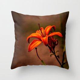 Orange Burst Throw Pillow
