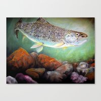 trout Canvas Prints featuring Rainbow Trout by RuthIsrael