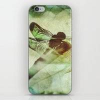 dragonfly iPhone & iPod Skins featuring Dragonfly by SpaceFrogDesigns