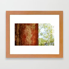 Under the wall Framed Art Print