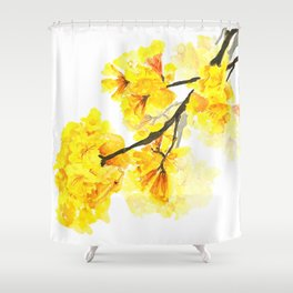 yellow trumpet trees watercolor yellow roble flowers yellow Tabebuia Shower Curtain