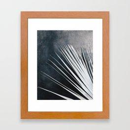 Dried Palm Framed Art Print