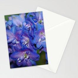 Sky blue Delphinium Flowers Stationery Cards
