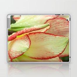 Abstract Iris Laptop & iPad Skin