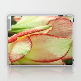 Abstract Iris Laptop & iPad Skin