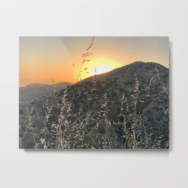 Sunset Glow Metal Print