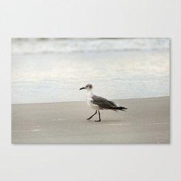 Seagull Stroll Canvas Print