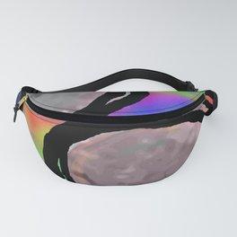 Rainbow 31 Fanny Pack