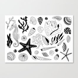 Tropical underwater creatures and seaweeds Canvas Print