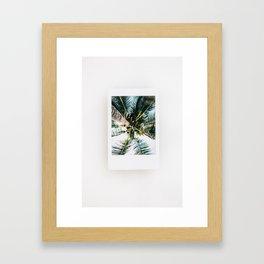 Polaroid Palm Tree Framed Art Print