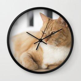 Ginger Cat Relaxing Wall Clock