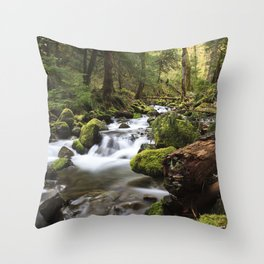 Paradise Creek IV Throw Pillow