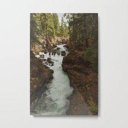 Rouge River Metal Print