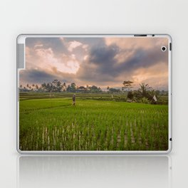 Bali rice field Laptop & iPad Skin