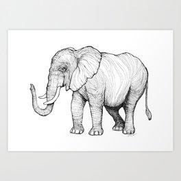 Lines of an Elephant Art Print