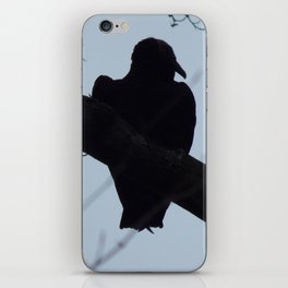 Turkey vulture silhouette iPhone Skin