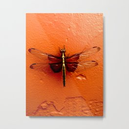 Dragonfly on the Wall Metal Print